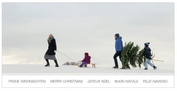 """Grußkartenset """"Frohe Weihnachten"""" Schlitten"""